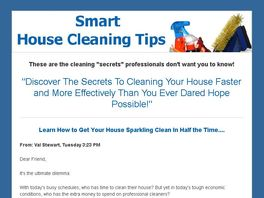 Go to: Cleaning At The Speed Of Life- The Ultimate Guide To Speed Cleaning