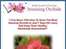 Go to: The Inside Guide To Orchids