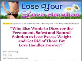 Go to: Losing Your Love Handles - The Complete Guide
