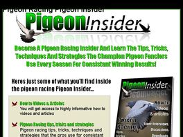 Go to: The Pigeon Insider